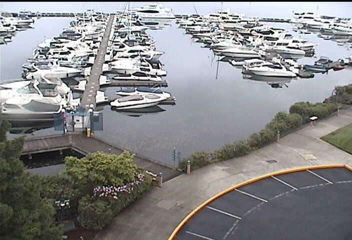 Carillon Point - Yacht Club photo 4
