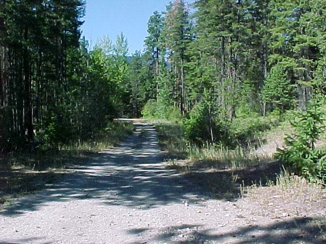 Peachland Live WebCam photo 5