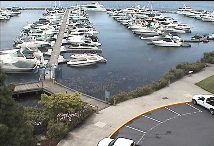 Carillon Point - Yacht Club photo 3