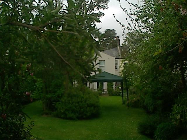 Lucksford Garden photo 3