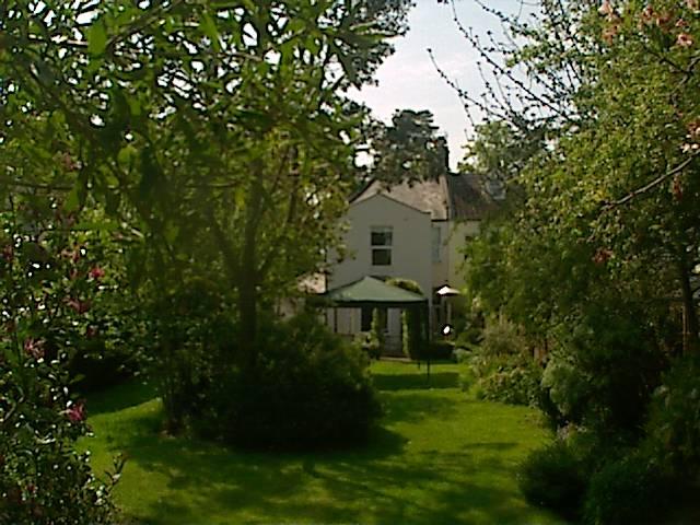 Lucksford Garden photo 1