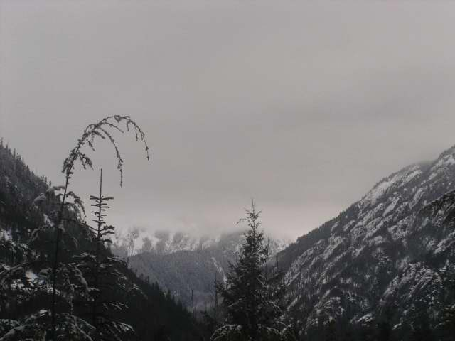 North Cascades National Park photo 4