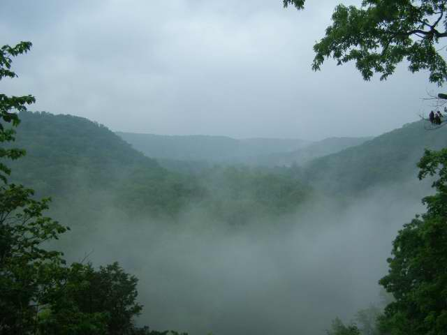 Mammoth Cave National Park photo 5