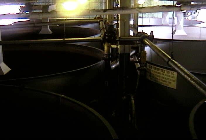 Buffalo Trace Distillery - Fermentor Room photo 1