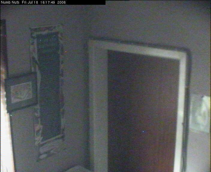 Vigilance camera  - Numb Nuts photo 3