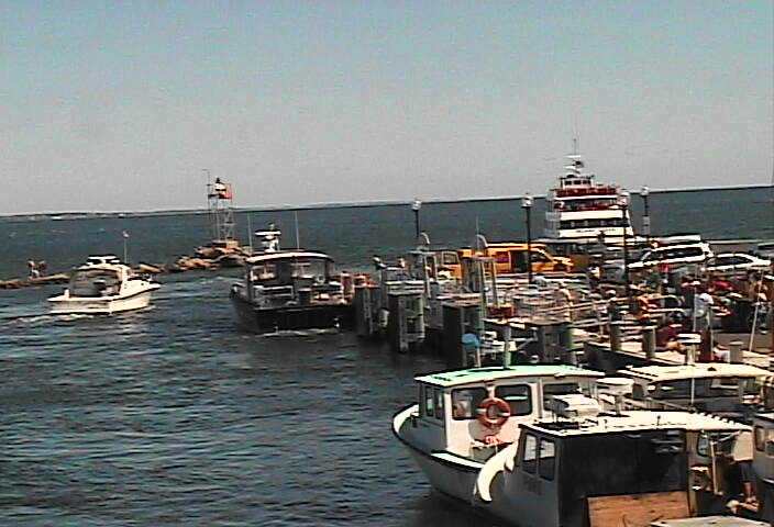 Oak Bluffs Marina photo 3