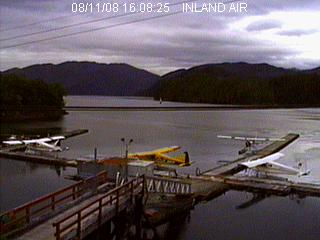 Seal Cove Live Dock Cam photo 6