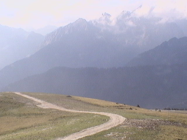 Passo Brocon - Seggiovia Larese photo 3