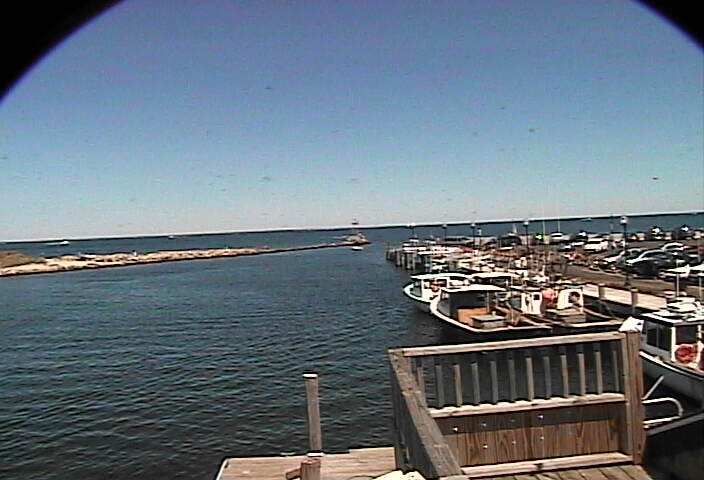 Oak Bluffs Marina photo 4