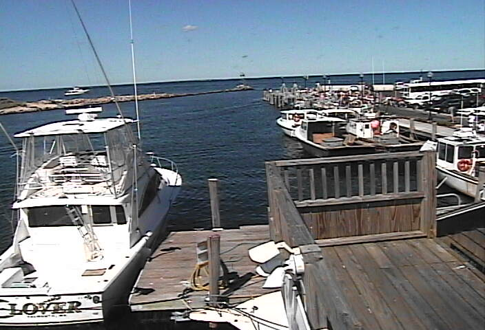 Oak Bluffs Marina photo 6
