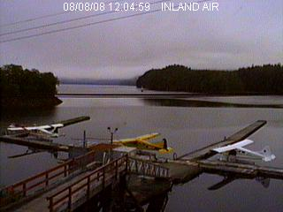Seal Cove Live Dock Cam photo 5