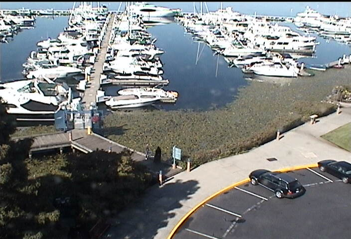 Carillon Point Yacht Club photo 3