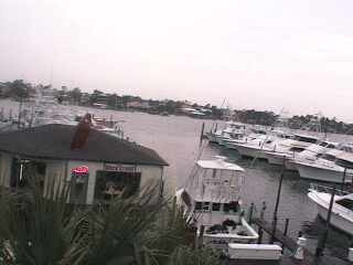 Gulf Shores - Zeke's Marina photo 6