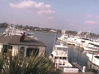 Gulf Shores - Zeke's Marina photo 3