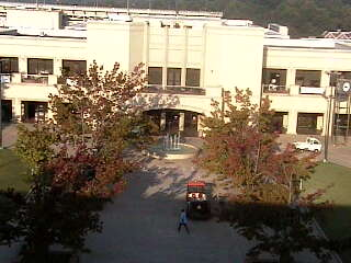 University of Arkansas Living Room  photo 3