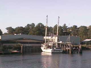 Gulf Shores - Lulu's photo 5