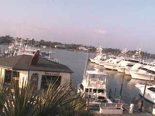 Gulf Shores - Zeke's Marina photo 4
