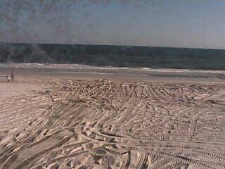 Gulf Shores - Public Beach photo 6