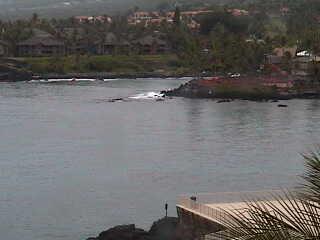 Sheraton - Keauhou Bay Resort & Spa photo 3