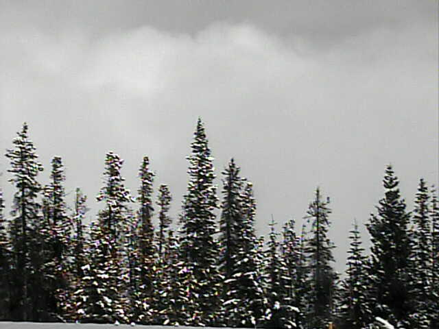 Winter Park Resort photo 5