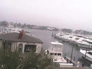 Gulf Shores - Zeke's Marina photo 1