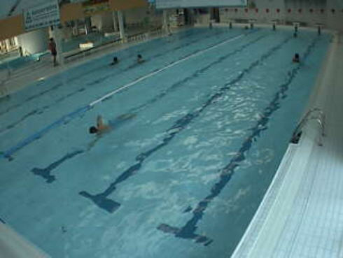 Swimming Pool Webcam Writtenmath Cf