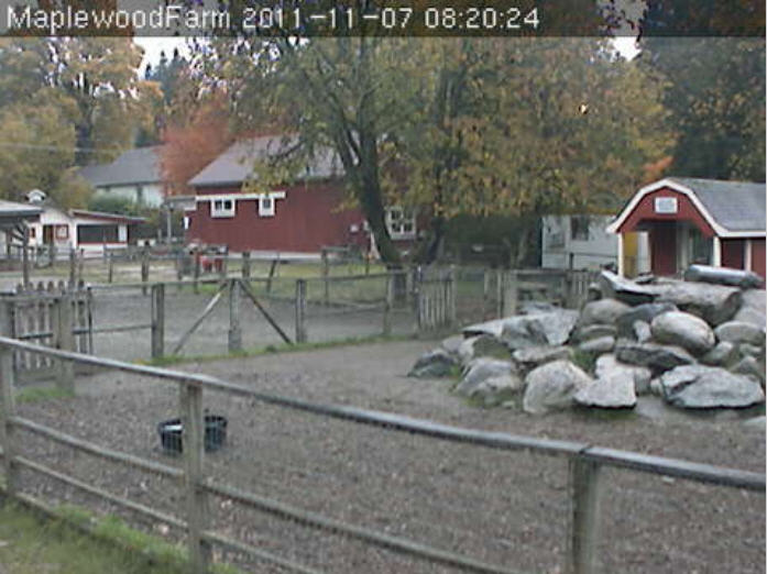 Maplewood Farm photo 2