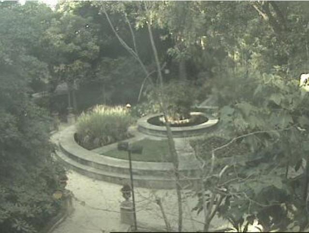 Botanical Garden photo 1