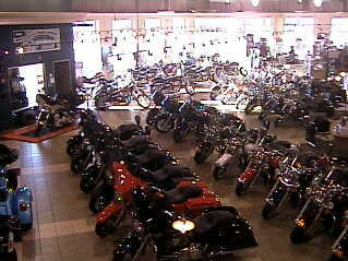 Bikes in Harley-Davidson of Greenville photo 1