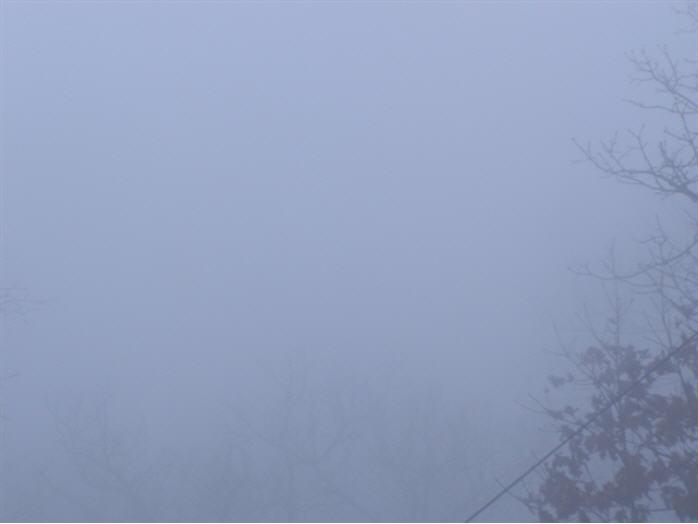 View of Joyce Kilmer Wilderness photo 1