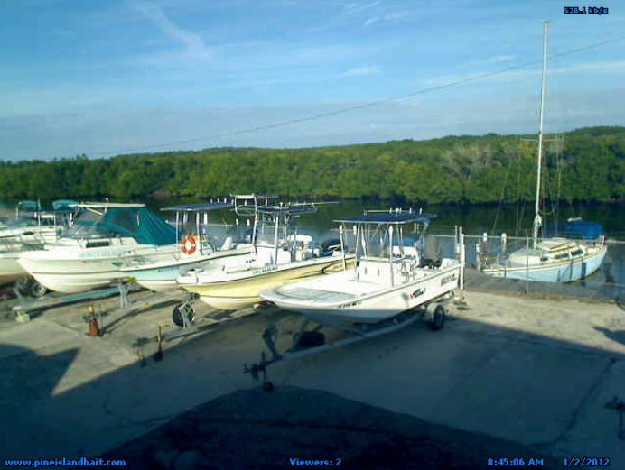 D & D Bait and Tackle Marina photo 1