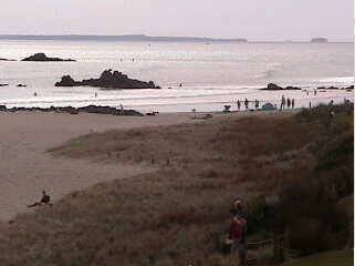 Tauranga beach photo 2