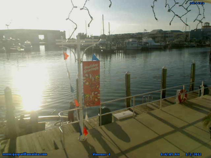 Gasparilla Marina Fuel Dock Live photo 1