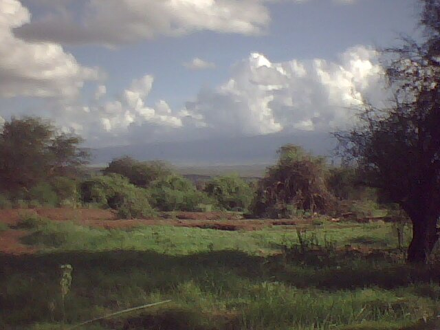 Amboseli National Park photo 2