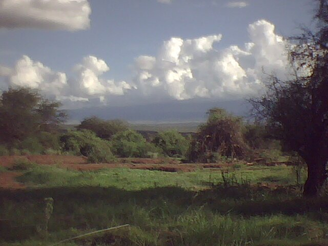 Amboseli National Park photo 1